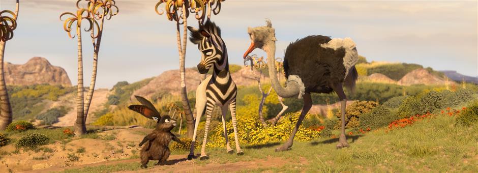*Koemba* de zebra - ValkLoyal