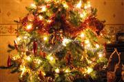 3-daags Kerst - Kasteel TerWorm