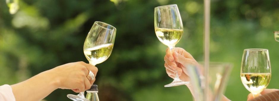 Unieke *wijnen* - Kasteel TerWorm