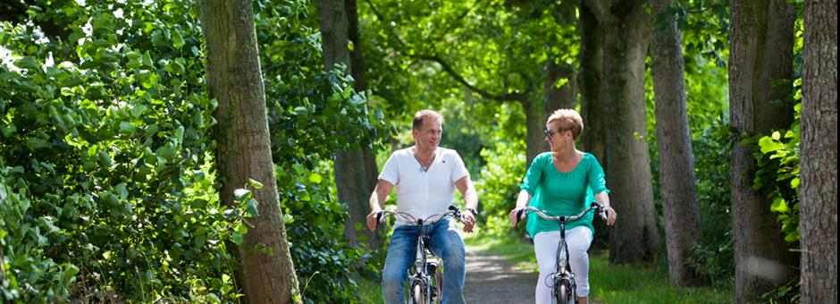 Rent a *bike* to join the beautiful *nature* - Hotel Vianen