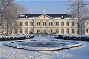Winter Arrangement - Hotel Kasteel Bloemendal