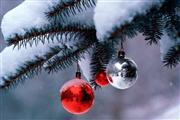 Kerst 2-daags - Hotel Sneek