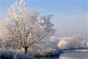 Hartje Winter