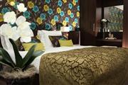 Comfort kamer - Hotel Spier-Dwingeloo