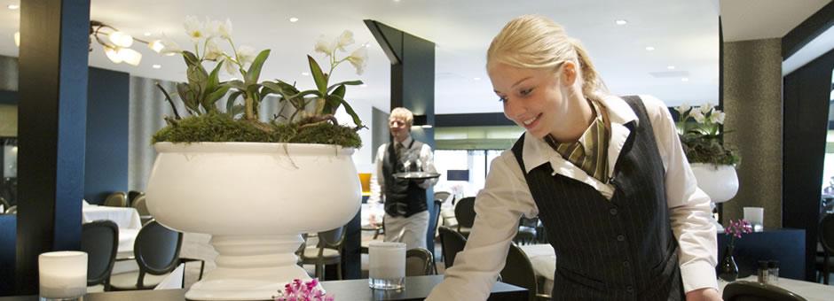 text - Hotel Spier-Dwingeloo