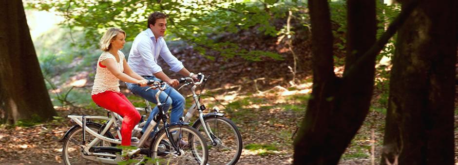 Die perfekte Kulisse für Radtouren - Hotel Spier-Dwingeloo
