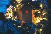 feestdagen arrangementen - Hotel Avifauna